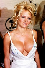 Pam-anderson-google